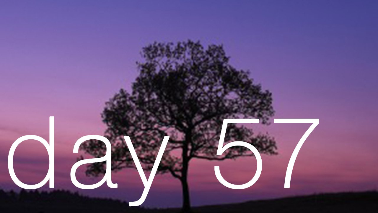 Day 57 - False: 'You will end up sitting under a tree forever.'