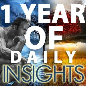 100 days of daily insights square