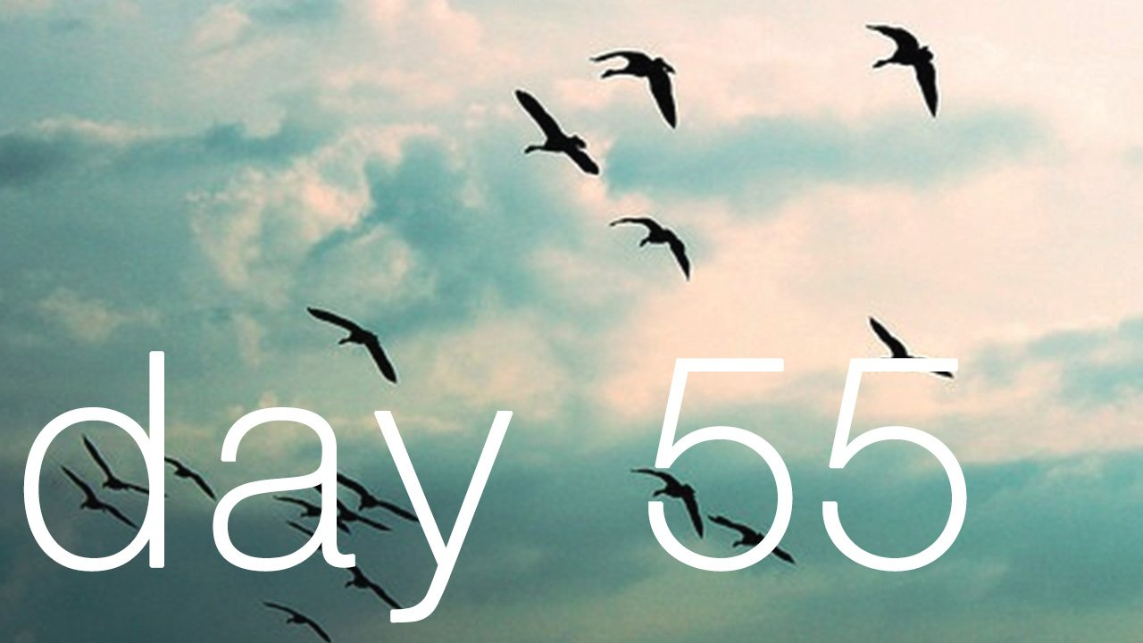 Day 55 - You Can't Chase Freedom